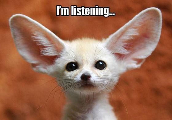 شیوه ی گوش کردن
