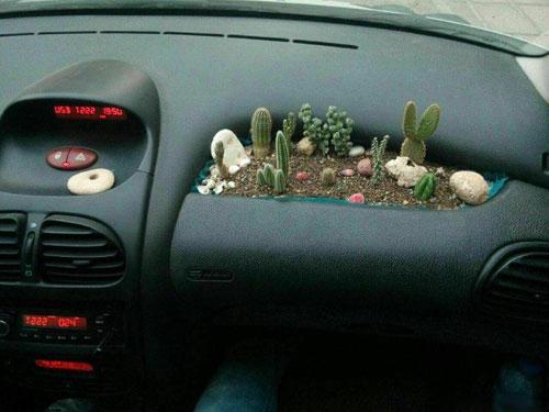 مجموعه تصاویری از خلاقیت عاشقان خودرو