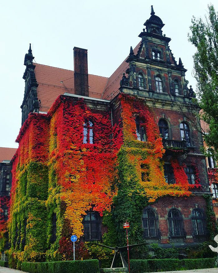 شات دیدنی از موزه ملی لهستان