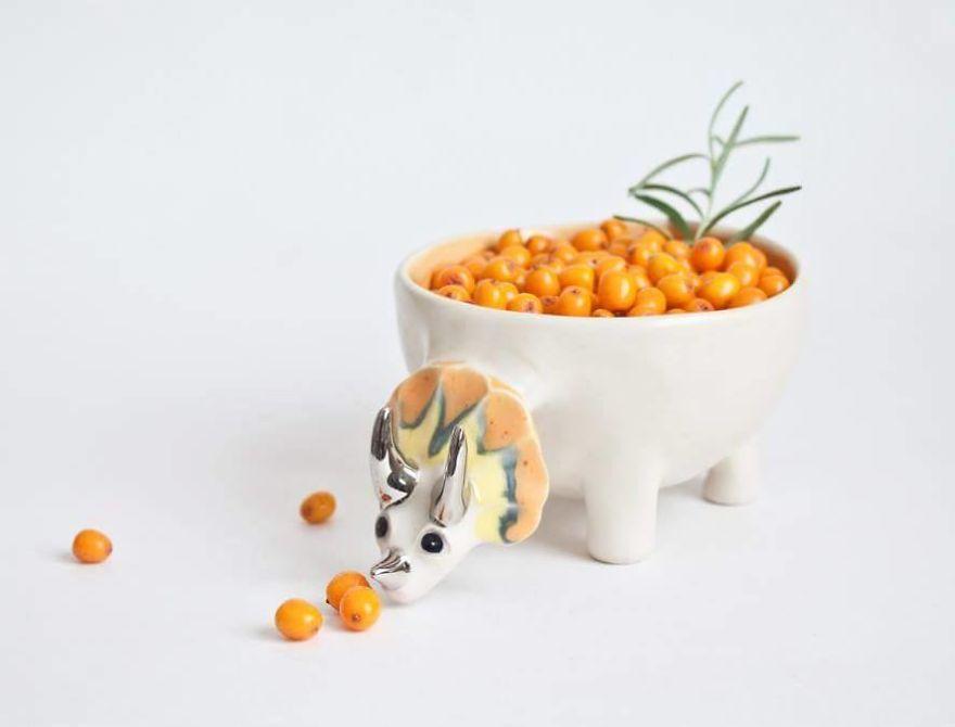ظروف سرامیکی جادویی