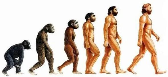 نگرشی در پیدایش چگونگی انسان از نظر دانشمندان