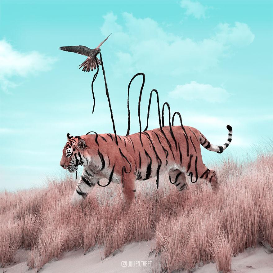 سورئال حیوانات