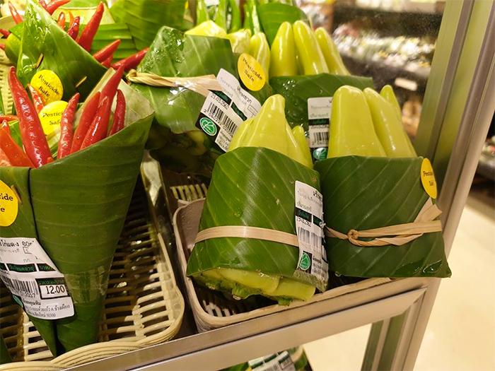 استفاده از برگ بجای کیسه پلاستیکی